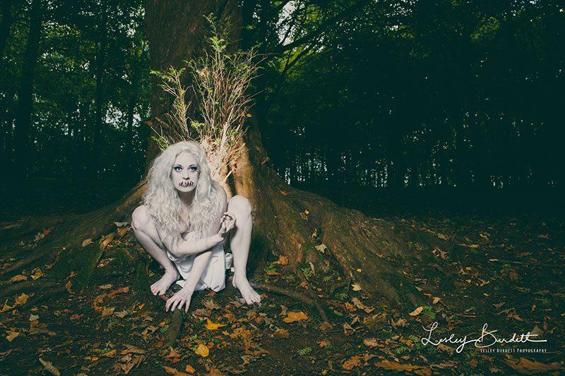 Image by Lesley Burdett
